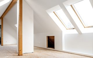 Roof light loft conversions