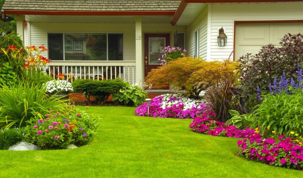 Benefits of having a landscape garden
