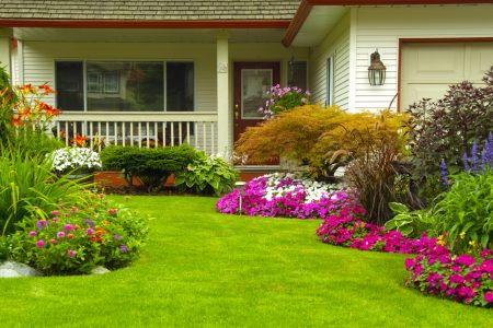 Benefits of having a landscape garden